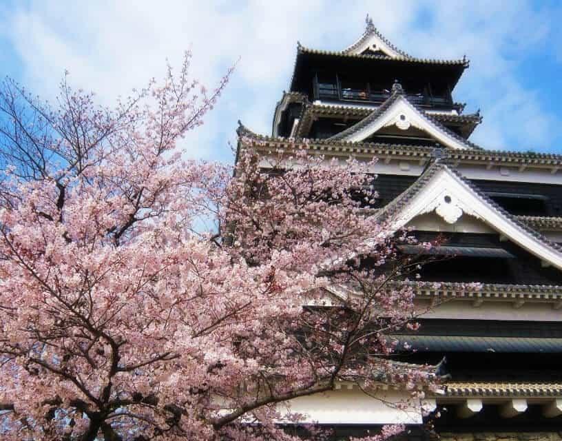 樱花旅游攻略·跟着熊本熊游九州